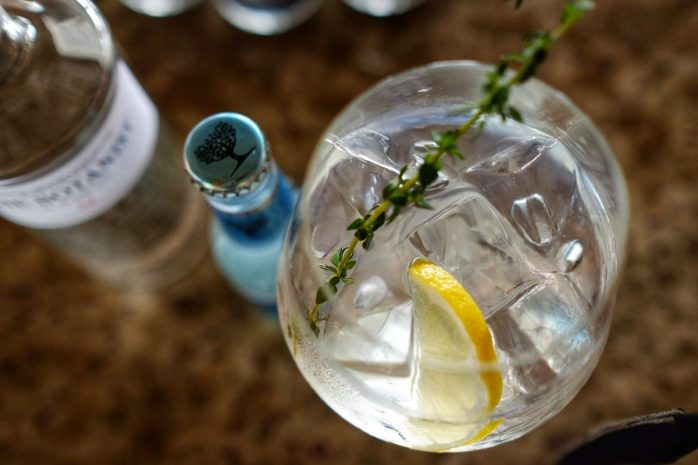 gin-tonic-2